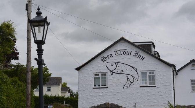 Sea Trout Inn am Dart