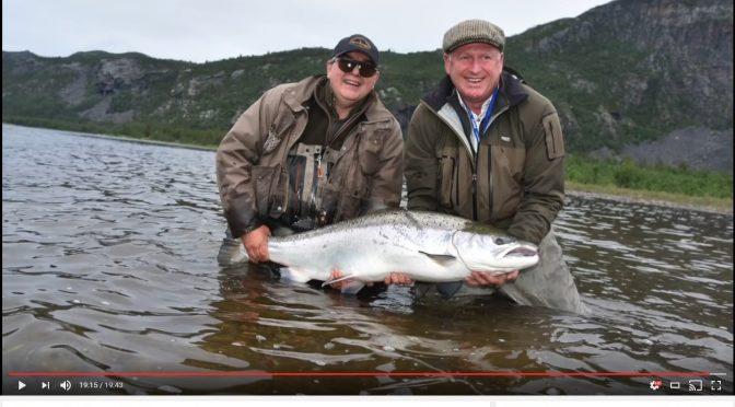 Alta Lachs 40 Pfund